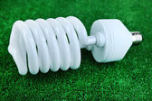 Energy saving light bulb on green grass background — Stock Photo