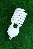Energy saving light bulb on green grass background — Stock Photo
