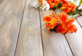 Beautiful Alstroemeria flowers on wooden table — Stock Photo