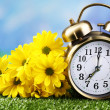 Alarm clock on green grass, on nature background — Stock Photo #44828143
