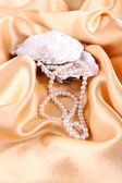 Beautiful pearls in shell on golden silk cloth — Stock Photo
