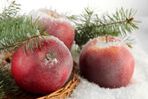 Red apples with fir branches on wicker stand on snow close up — Stock Photo