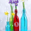 Beautiful irises and daffodils in bottles, on light background — Stock Photo #45073655