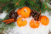Ripe tangerines with fir branch in snow close up — Stock Photo