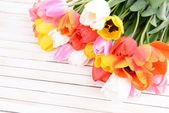 Lindas tulipas em balde em close-up tabela — Foto Stock
