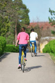 Young couple riding on bicycles in park — Foto de Stock