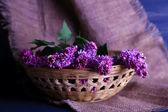 Beautiful lilac flowers in wicker basket, on color wooden background — Foto de Stock