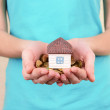 Little house-toy and coins in woman hands close-up — Stock Photo #45399407
