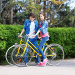 Young couple with bicycles in park — Stock Photo #45399859