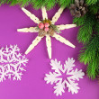 Beautiful snowflakes with fir branch on purple background — Stock Photo #45629793