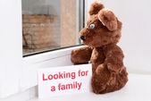 玩具熊望向窗口特写 — 图库照片