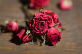 Beautiful pink dried roses on old wooden background — Stock Photo