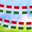 Garland of flags on bright background — Stock Photo #45904653