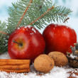 Christmas composition with red winter apples on bright background — Stock Photo #45904783