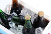 Ice chest full of drinks in bottles, isolated on white — Stock Photo