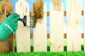 Applying protective varnish to wooden fence, on bright background — Stockfoto