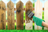 Applying protective varnish to wooden fence, on bright background — Zdjęcie stockowe