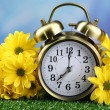 Alarm clock on green grass, on nature background — Stock Photo #46197847