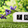 Digital alarm clock on green grass, on nature background — Stok fotoğraf