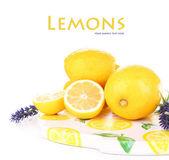 Zátiší s čerstvé citrony a levandule, izolované na bílém — Stock fotografie