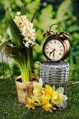 自然の背景に、緑の芝生の上の目覚まし時計 — ストック写真