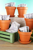 Business concept: growing money in the flowerpots on nature background — Stock Photo