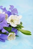 Beautiful bouquet with periwinkle flowers on blue table — Stock Photo