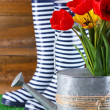 Composition of colorful tulips in watering can and rain boots on bright background — Stock Photo #46306915