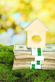 Wooden house on dollars — Stock Photo