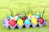 Oeufs de Pâques colorés avec l'herbe et des fleurs dans le plateau sur la table sur fond en bois — Photo