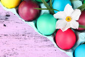 Colorful Easter eggs with grass and flowers in tray on wooden background — Stockfoto