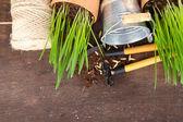 Green grass in flowerpots and gardening tools, on wooden background — Zdjęcie stockowe