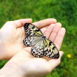 Beautiful butterfly on hands — Stock Photo #46311875
