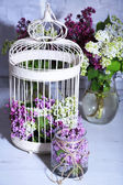 Lilac flowers in decorative cell — Stock Photo