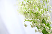 Beautiful lilies of the valley on cloth background — Zdjęcie stockowe
