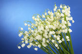 Beautiful lilies of the valley on blue background — Zdjęcie stockowe