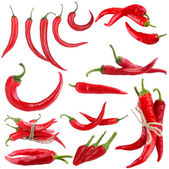 Red hot chili pepper collage, isolated on white — Stock Photo