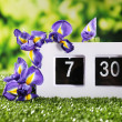 Digital alarm clock on green grass, on nature background — Stockfoto