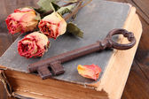 Old key and old book — Stockfoto