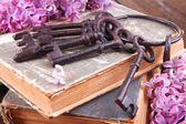 Old keys and old books — Stock Photo
