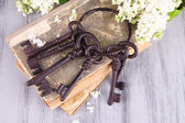 Old keys and old books — Stockfoto