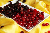 Fresh and dry cranberry in plate on fabric close-up — Stock fotografie