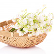 Постер, плакат: Beautiful lilies of the valley in wicker basket isolated on white