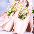Постер, плакат: Beautiful lilies of the valley in pointes
