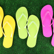 Bright flip-flops on green grass background — Stock Photo #46539079