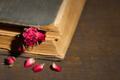 Old book with dried rose — Stockfoto