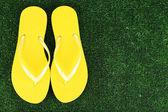 Bright flip-flops on green grass background — Stock Photo