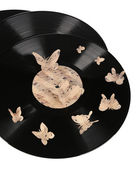 Old vinyl records with paper butterflies, isolated on white — Foto Stock