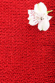 Beautiful flower on knitted fabric background — Stock Photo