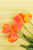 Beautiful tulips in bucket on table close-up — Foto de Stock